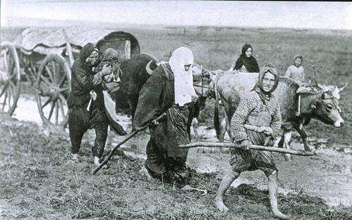 Balkan Refugees